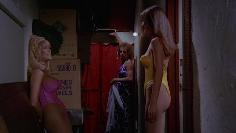 The Swinging Barmaids (1975)