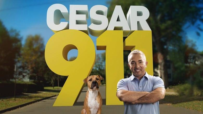 Cesar+911