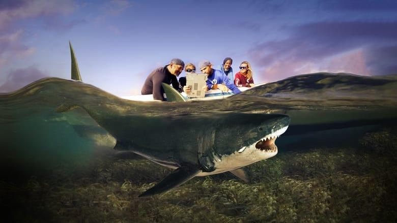 مسلسل Shark Attack Files 2021 مترجم اونلاين