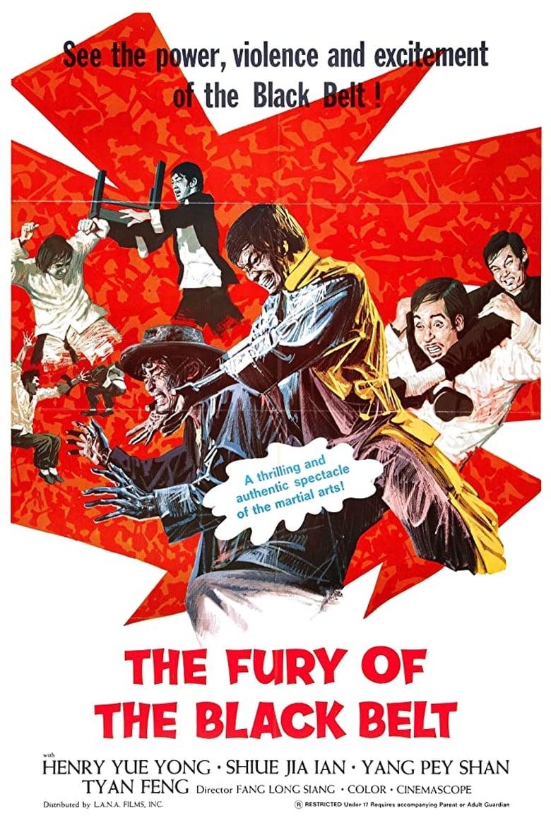 The Awaken Punch (1973)