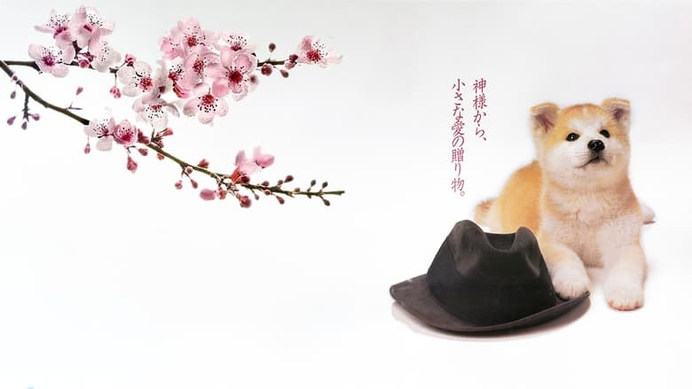 Hachi-ko banner backdrop