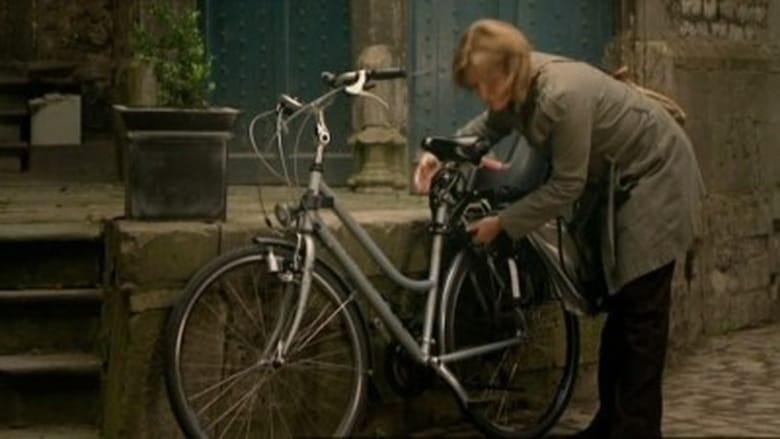 Mastrichto policija / Flikken Maastricht  (2007) 1 Sezonas