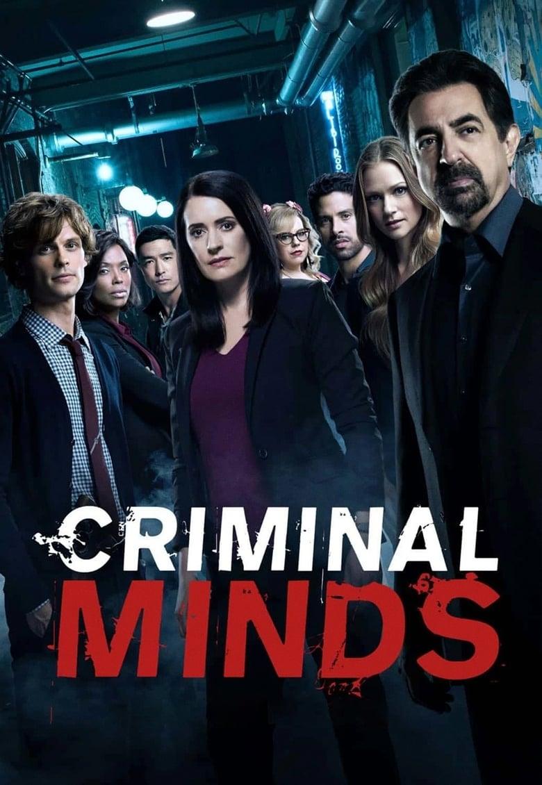 Mentes criminales (Temporada 13)  Torrent