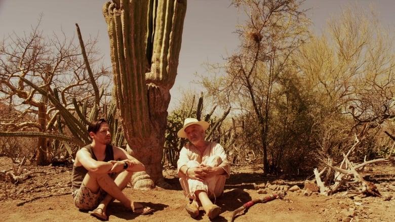 Film Baja Ingyenes Online