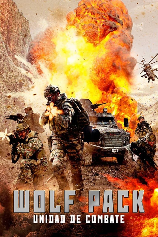 Meteler / Wolfpack Unidad de Combate