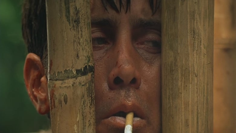 elements of darkness in apocalypse now and Apocalypse now, which was shot before star wars, was released afterwards ford was apparently so nervous when shooting his scenes that coppola added a story beat for his character to drop his.