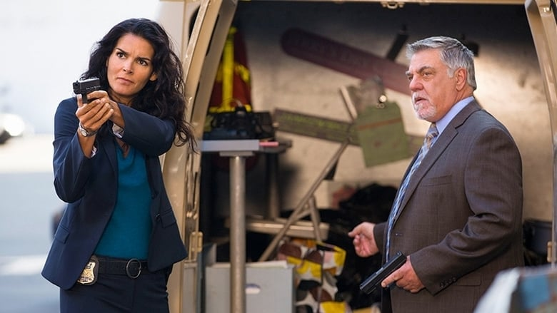 Detektyvė Rizoli / Rizzoli & Isles (2014) 5 Sezonas