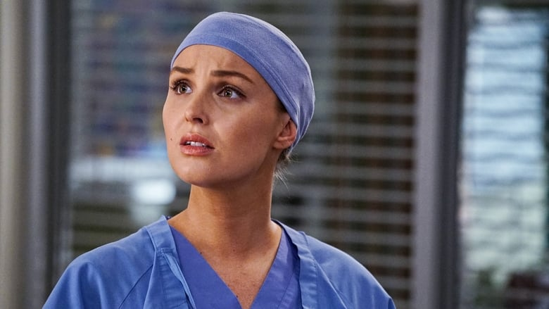 Grey's Anatomy Season 13 Episode 14