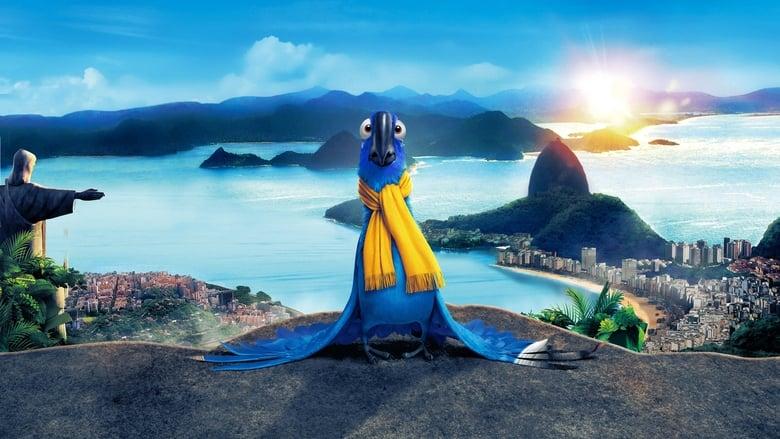 Rio banner backdrop
