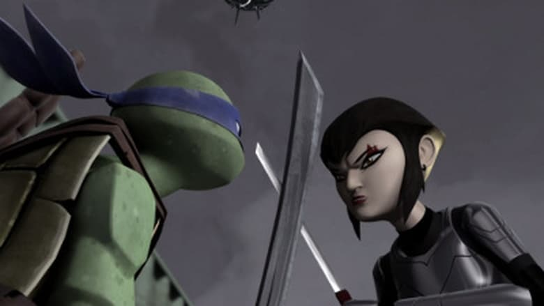 Teenage Mutant Ninja Turtles: 1×20