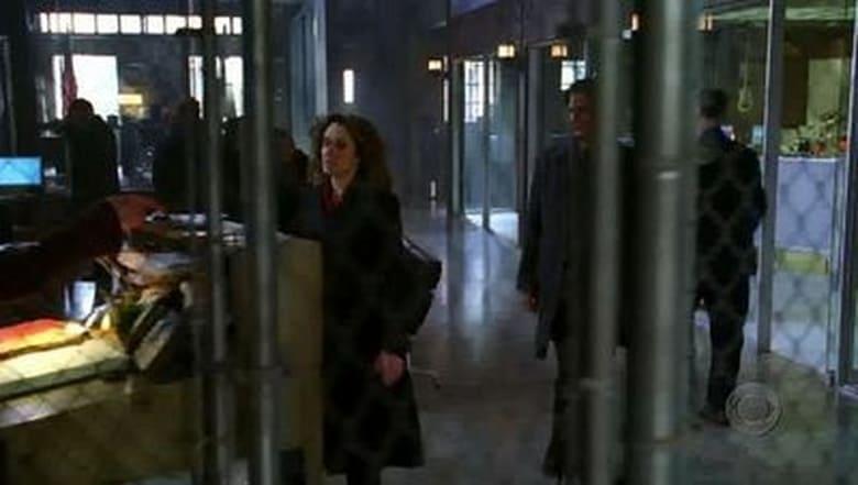 CSI: Nova York: 1×15