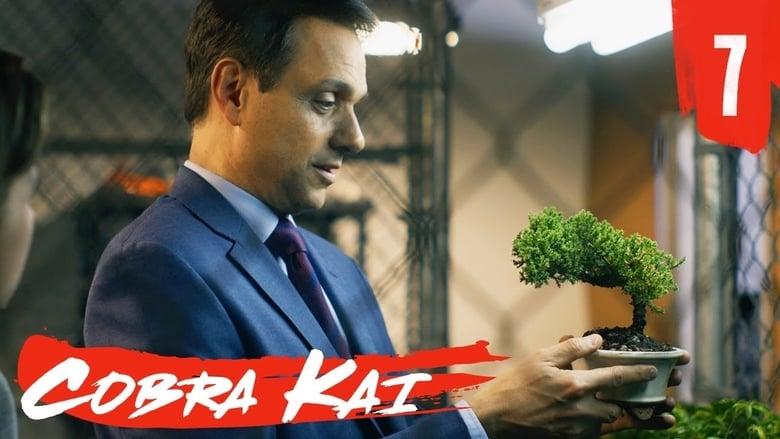 Cobra Kai Saison 1 Episode 7