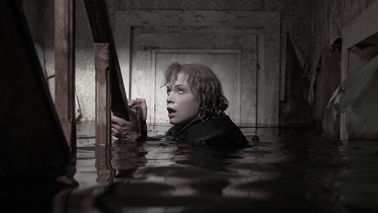 Voir The storm en streaming vf gratuit sur StreamizSeries.com site special Films streaming