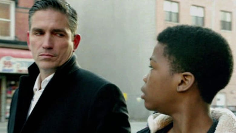 Person of Interest 1×14
