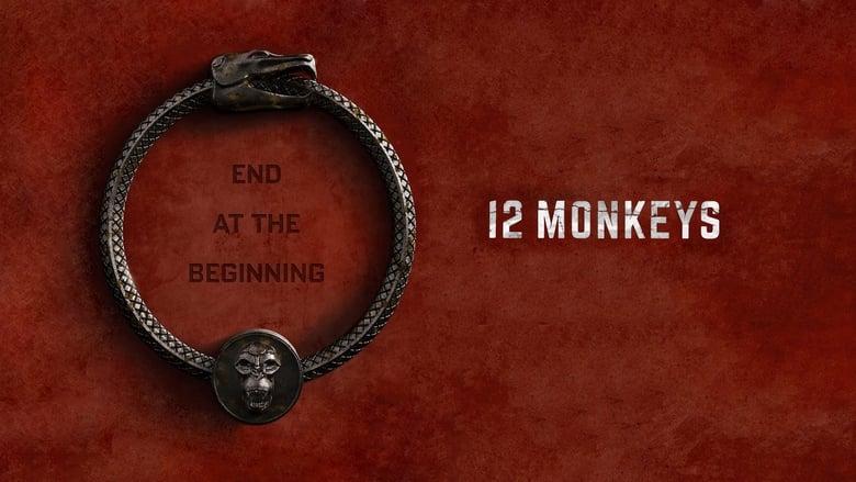 12+Monkeys
