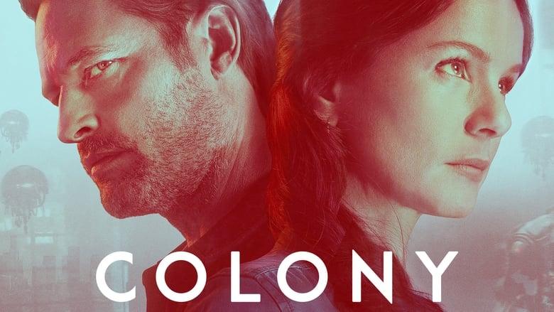Colony