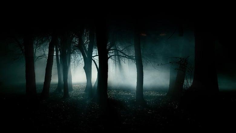 Bagliori+nel+buio