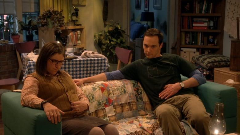 The Big Bang Theory Sezonul 11 Episodul 11
