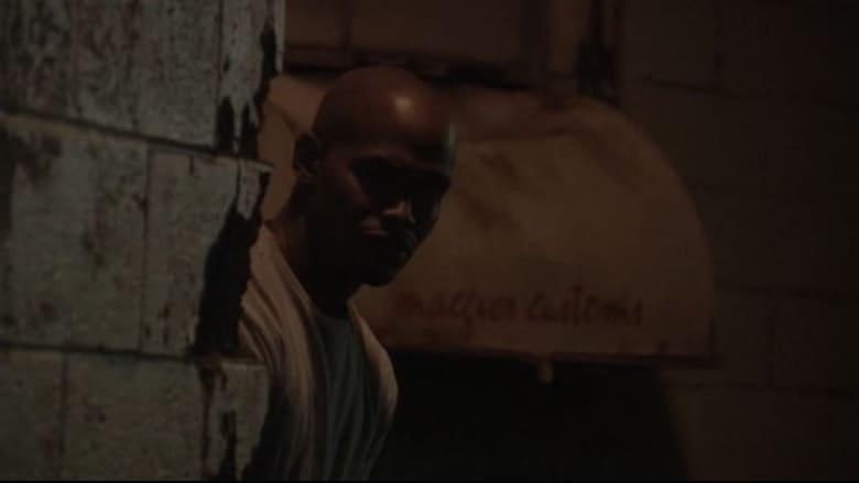 مشاهدة فيلم Caught in the Crossfire 2010 مترجم أون لاين بجودة عالية