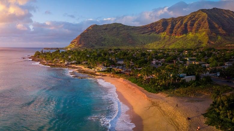 Wild+Hawaii