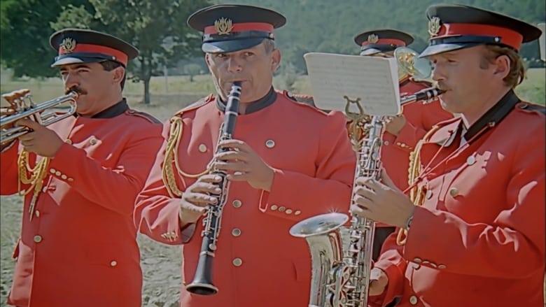 Selamsiz's Band