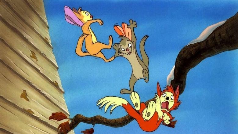 Banjo+il+gattino+ribelle