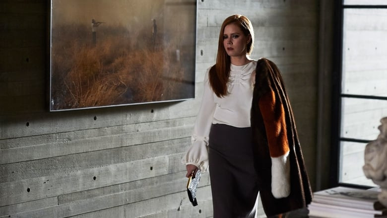 Nocturnal Animals 2016