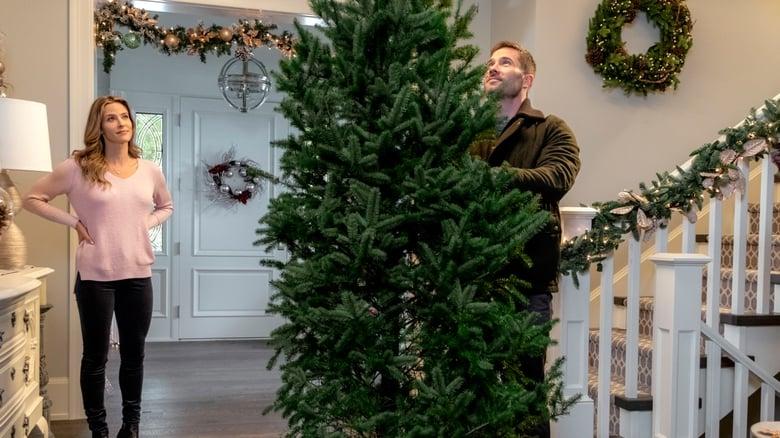 Karen Kingsbury's Maggie's Christmas Miracle - Miracolul lui Maggie (2017) Online Subtitrat In ...