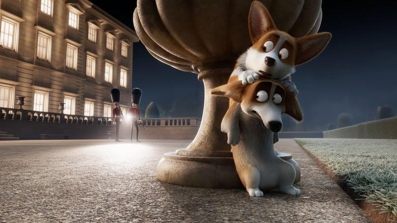 Rex - Un cucciolo a palazzo 2019 cb01 streaming in linea liano senza altadefinizione01 limiti scarica