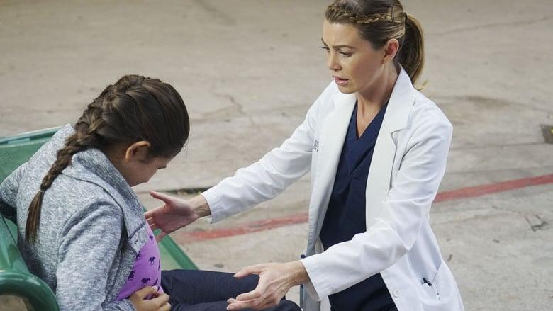 Grei anatomija / Grey's Anatomy (2014-2015) 11 Sezonas LT SUB