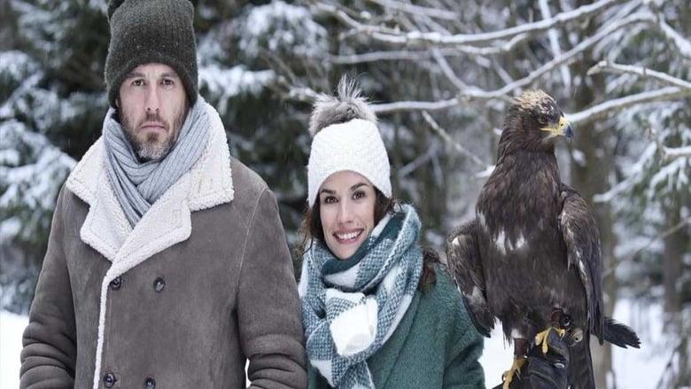 Guarda Il Film Coup de foudre sur un air de Noël Con Sottotitoli In Italiano