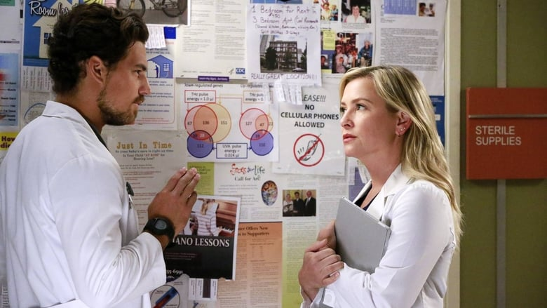 Grei anatomija / Grey's Anatomy (2015) 12 Sezonas LT SUB
