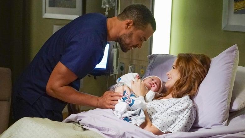 Grei anatomija / Grey's Anatomy (2016) 13 Sezonas LT SUB