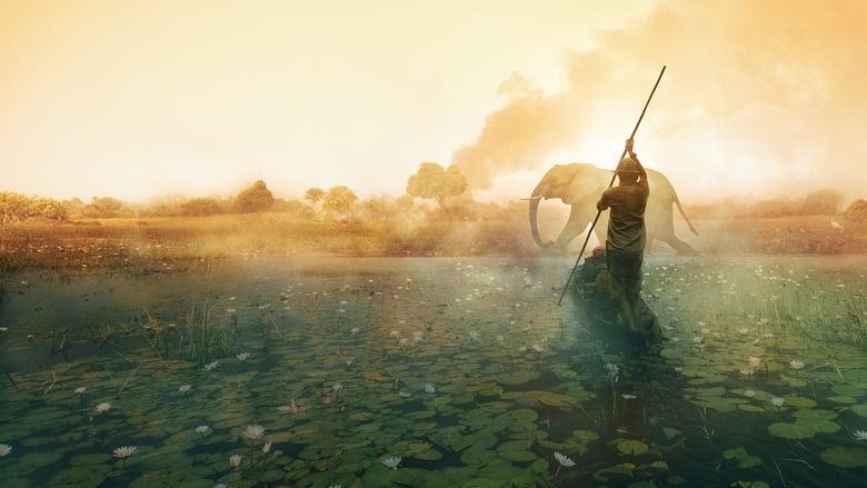 مشاهدة فيلم Into the Okavango 2018 مترجم أون لاين بجودة عالية