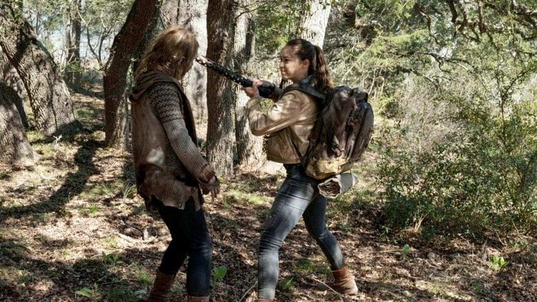 The Walking Dead Season 6 Episode 7 Stream