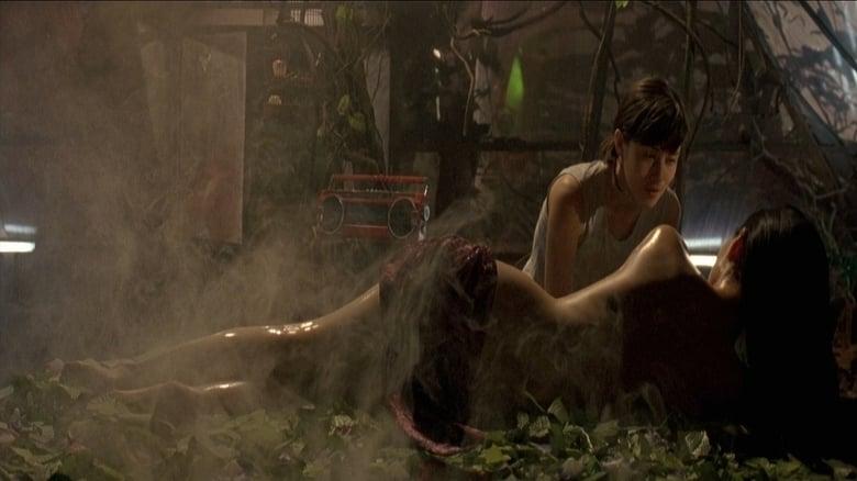 Die Töchter des chinesischen Gärtners (2006)