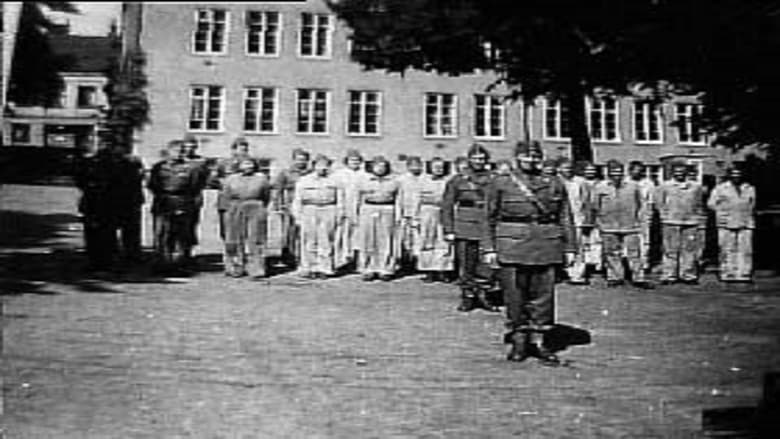 映画-- Förintelsens beska efterbörd - Röda Korset och svensk hjälpverksamhet 1945-1947 -を高品質のHD 720pで見る