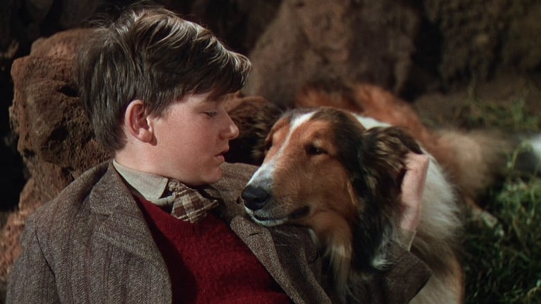 Lassie Come Home banner backdrop