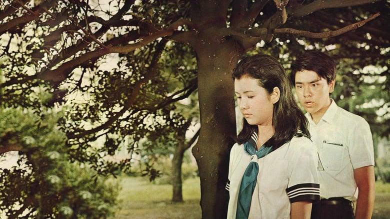 Watch High School Affair 1337 X movies