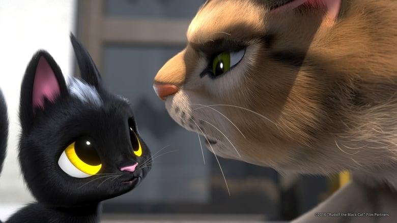 Rudolf The Black Cat Srt