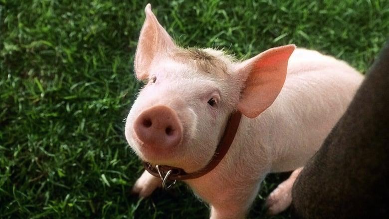 Babe, le cochon dans la ville (1998)