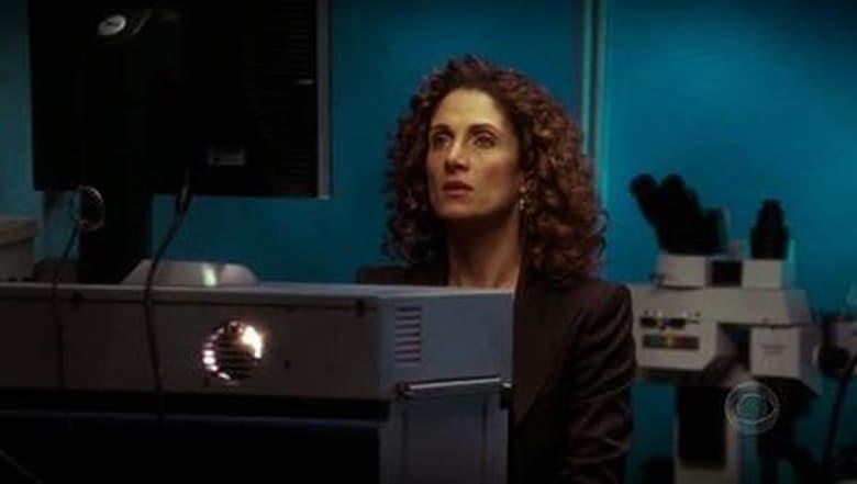 CSI: Nova York: 1×17