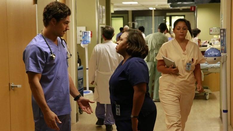 Grey's Anatomy: 12×8