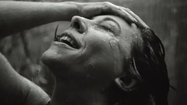 Film Ansehen Die Tote Mit Deutschen Untertiteln An