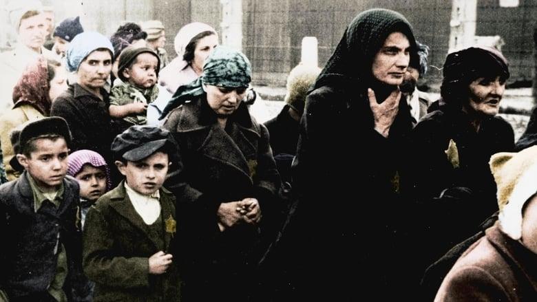 Auschwitz+Untold+in+Color