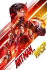 Ant-Man 2 y la Avispa (2018)
