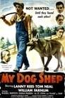 My Dog Shep (1946)