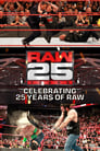 Raw 25: Celebrating 25 Years Of Raw