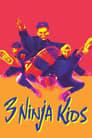 3 Ninja Kids
