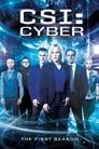 CSI elektroninių nusikaltimų skyrius 1 Sezonas